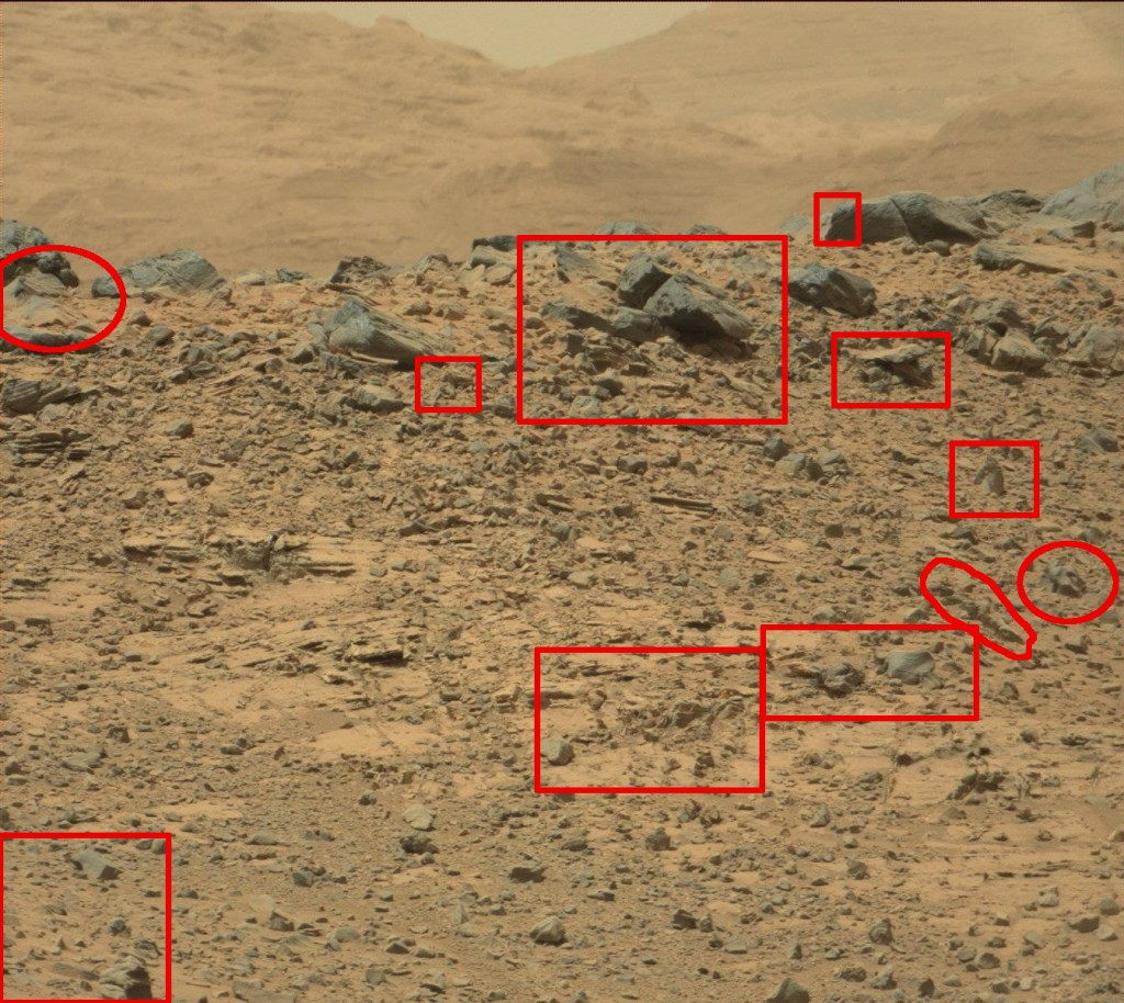 Sol-710-mars-rover-artifacts-harry-36