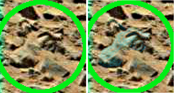 mars anomaly bull head sol 710 was life on mars large