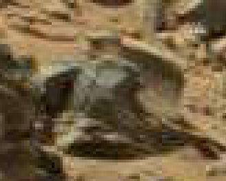 mars anomaly circular statue sol 710 was life on mars