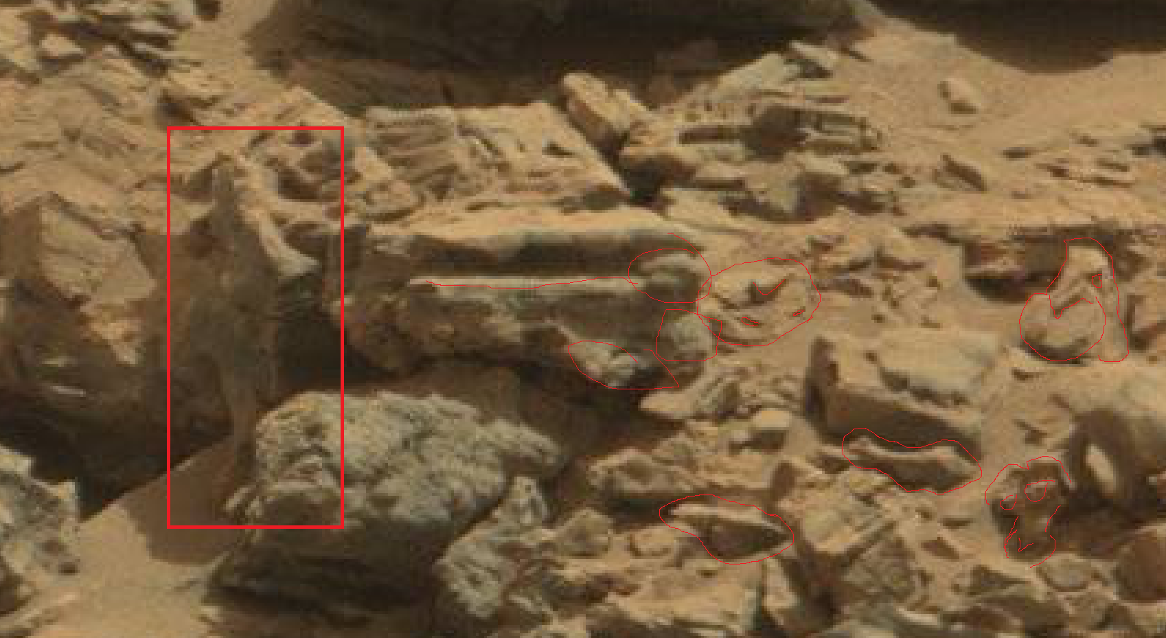mars anomaly horse and other items outined sol 712 was life on mars