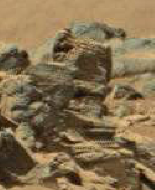 mars anomaly large skull head sol 710 was life on mars
