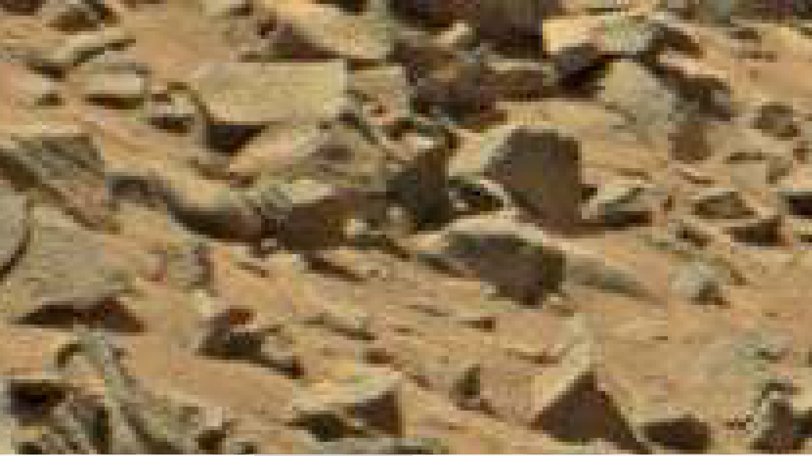 mars anomaly pie shaped stones sol 710 was life on mars