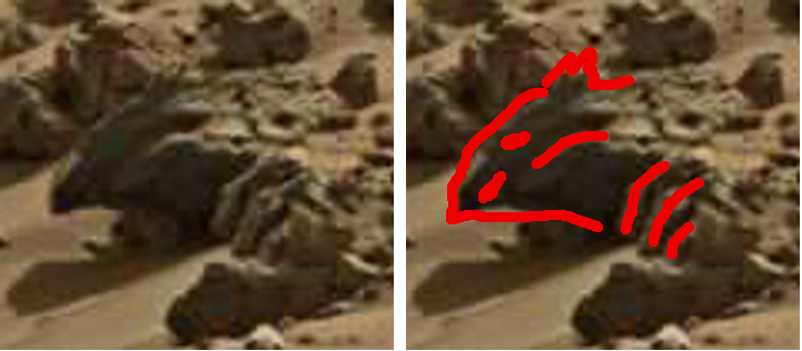 mars anomaly reptile head with fingers beside it sol 713 was life on mars 2