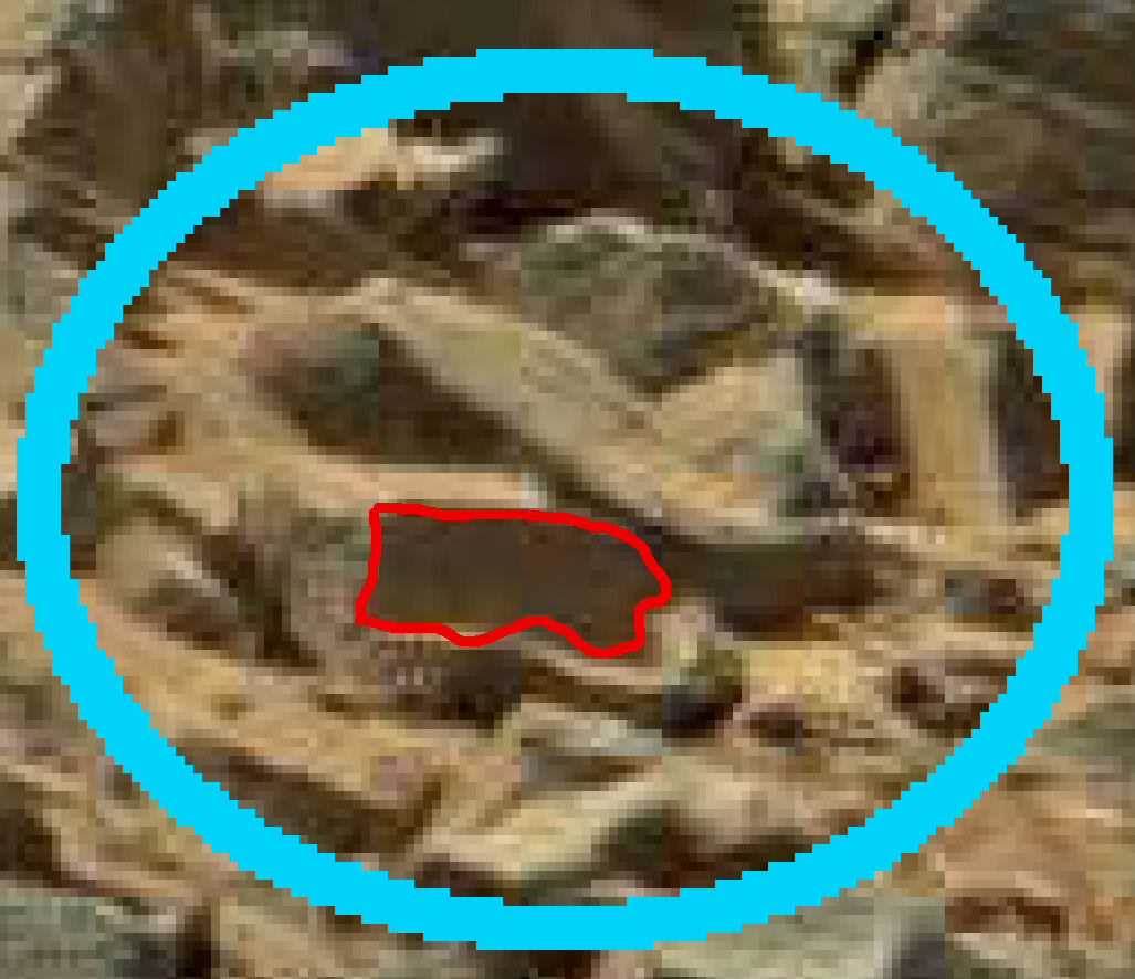 mars anomaly scrubbed rock sol 710 was life on mars
