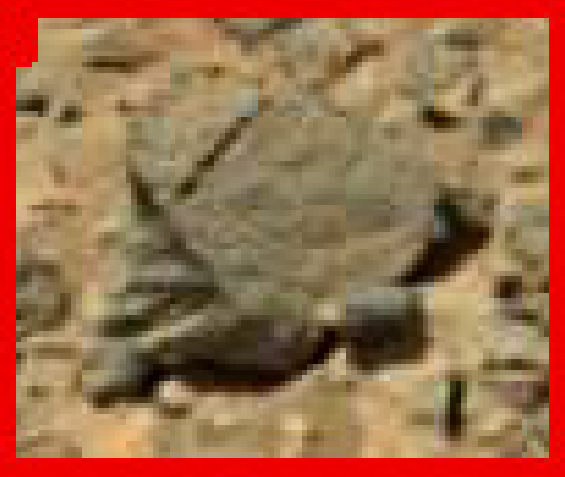 was-life-on-mars-sol-711-stone-3