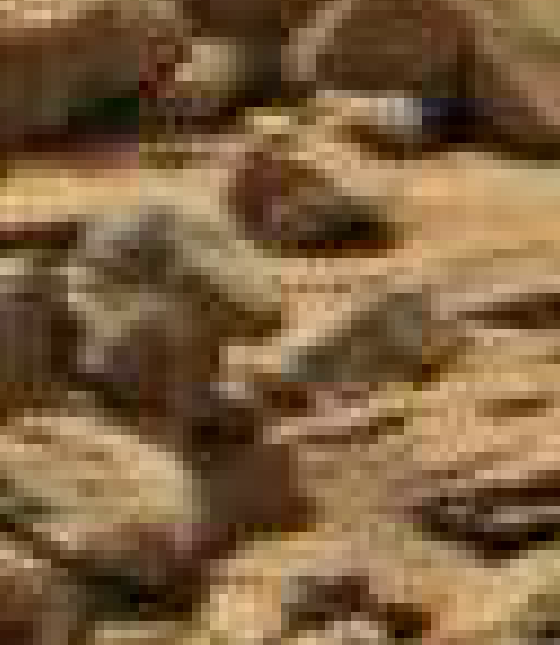 mars anomaly creature statue head sol 710 was life on mars