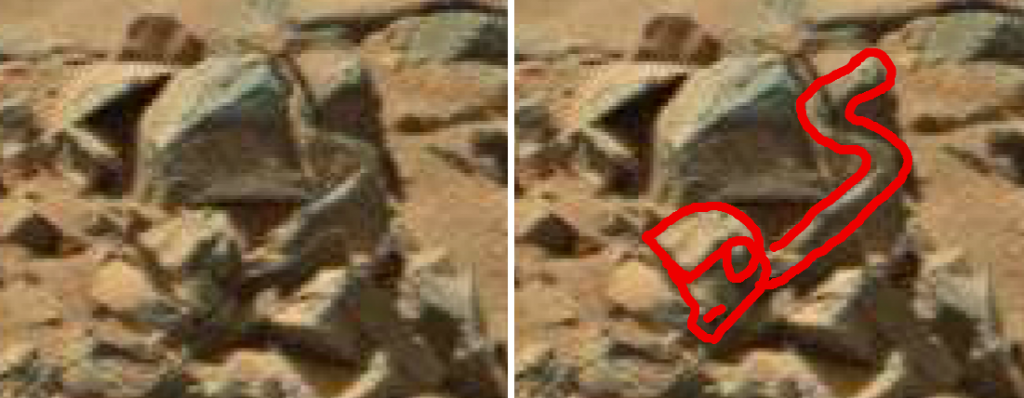 mars anomaly serpent creature sbs sol 710 was life on mars