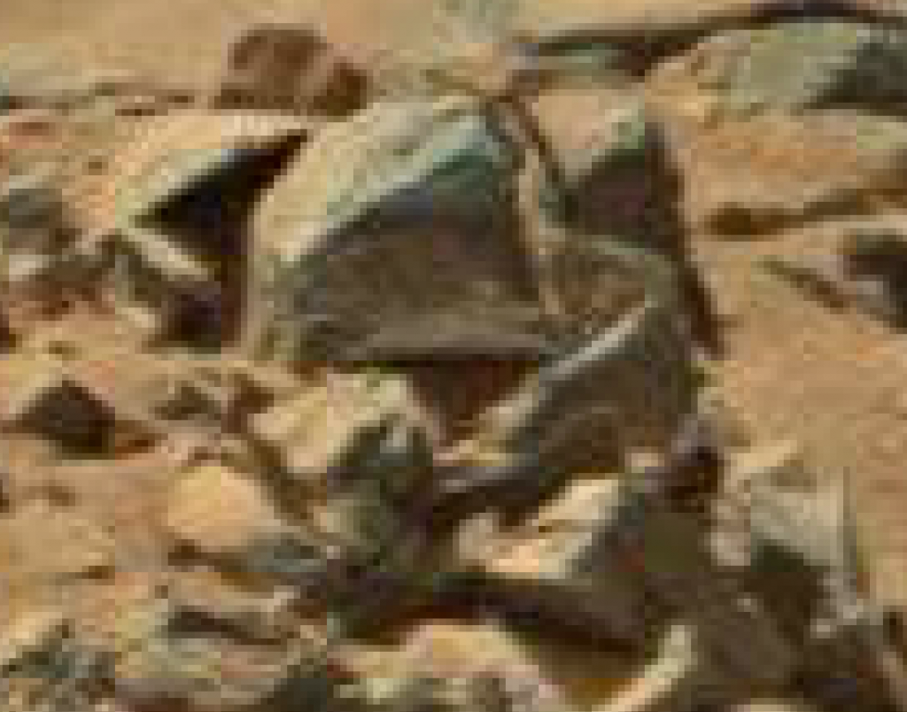 mars anomaly serpent creature sol 710 was life on mars
