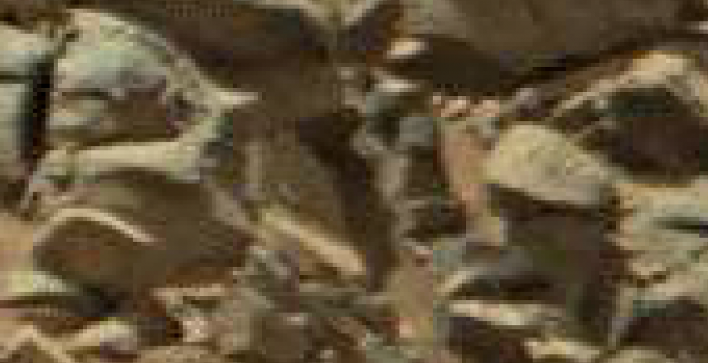 mars anomaly statues of creatures sol 710 was life on mars
