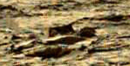 mars sol 1248 anomaly artifacts 13 was life on mars