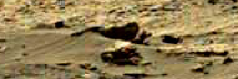 mars sol 1248 anomaly artifacts 5 was life on mars