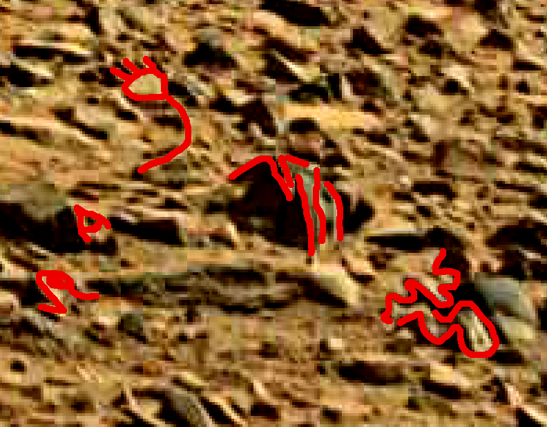mars sol 714 anomaly artifacts 25a was life on mars