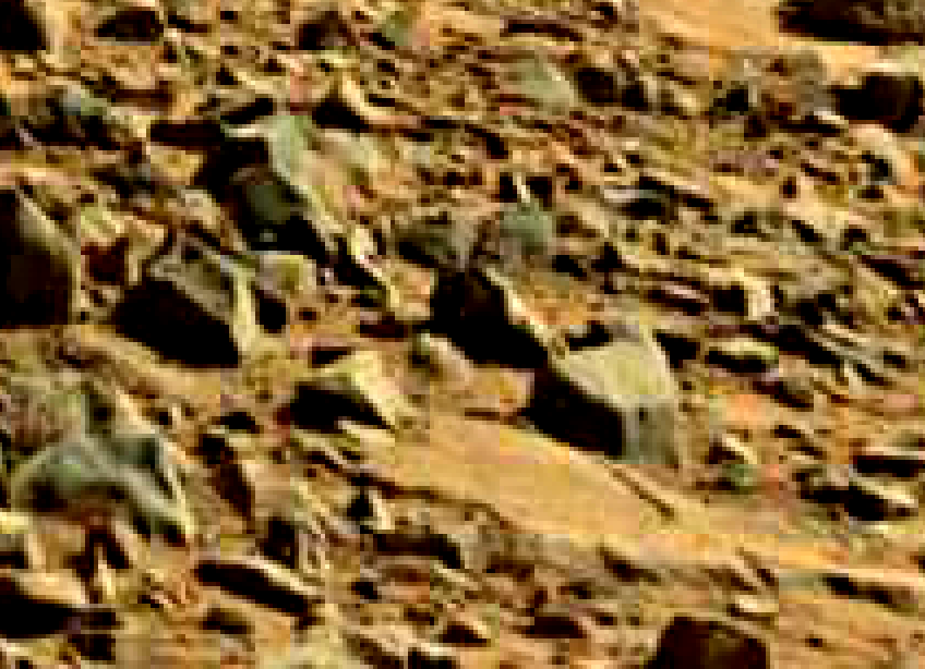 mars sol 714 anomaly artifacts 26 was life on mars