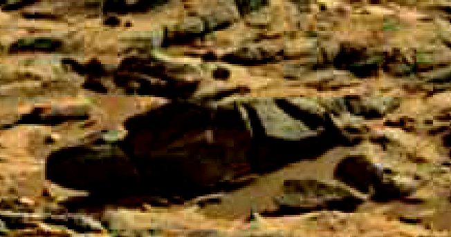 mars sol 714 anomaly artifacts 29 was life on mars