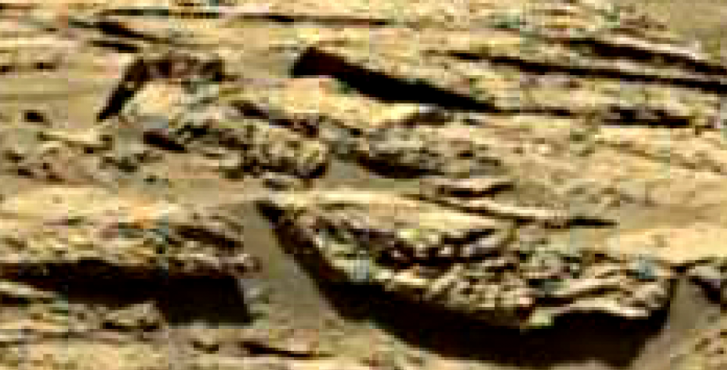 mars sol 1249 anomaly 4 was life on mars