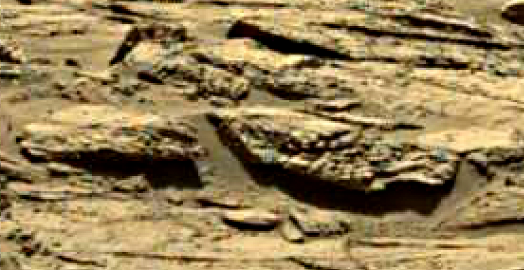 mars sol 1249 anomaly 5 was life on mars