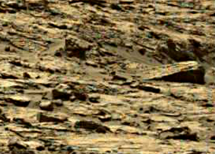 mars sol 1249 anomaly 9 was life on mars