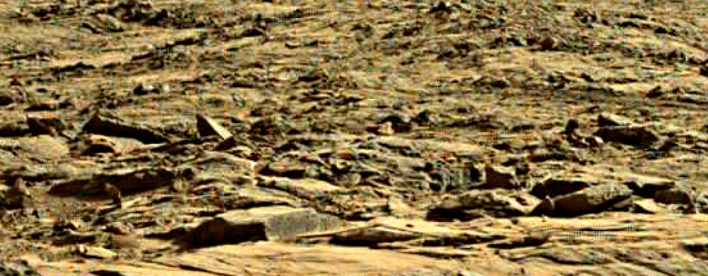 mars sol 1262 anomaly 1 was life on mars