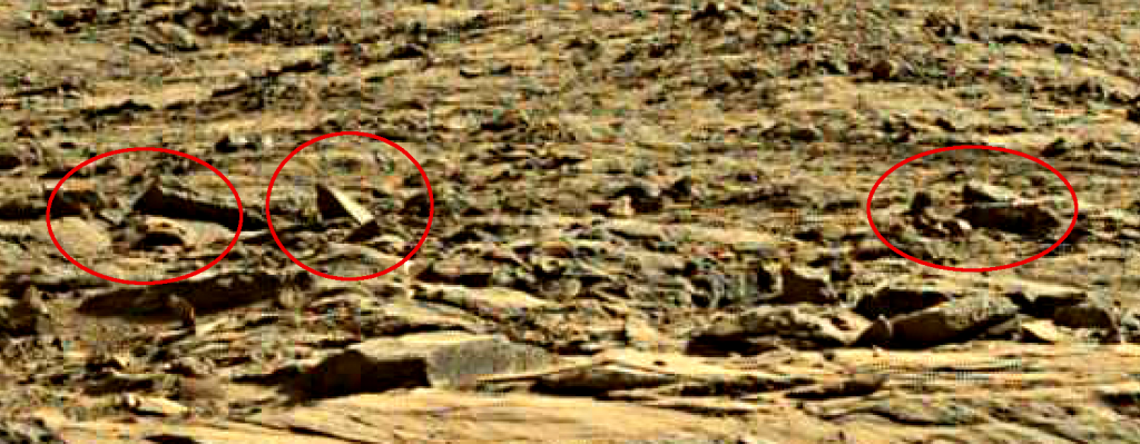 mars sol 1262 anomaly 1a was life on mars