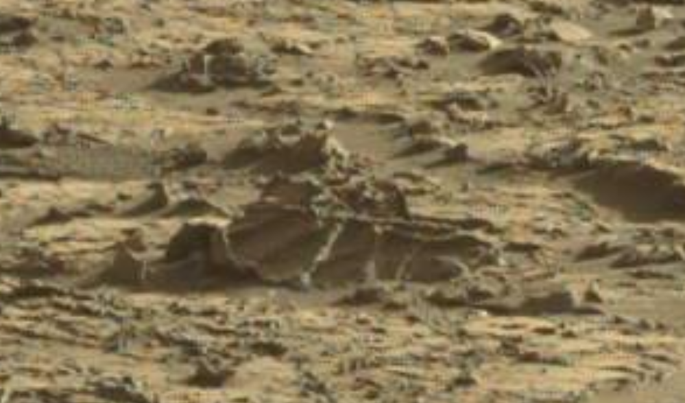 mars sol 1264 anomaly 1 was life on mars