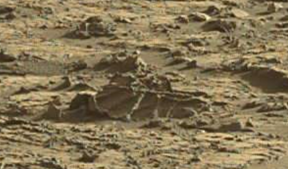 mars sol 1264 anomaly 1a was life on mars