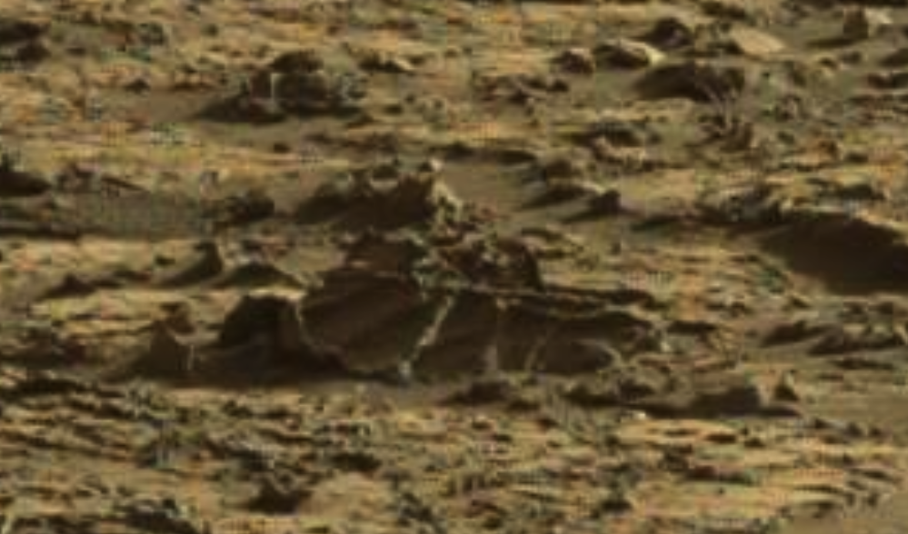 mars sol 1264 anomaly 1d was life on mars