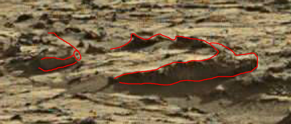 mars sol 1264 anomaly 2a was life on mars
