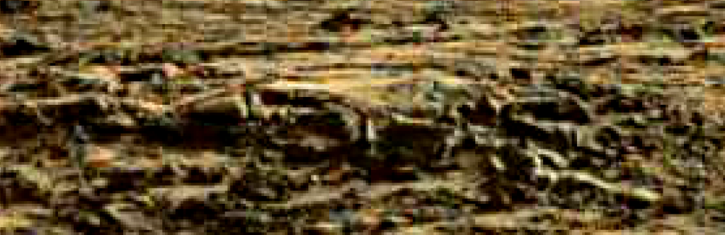 mars sol 1264 anomaly 6 was life on mars