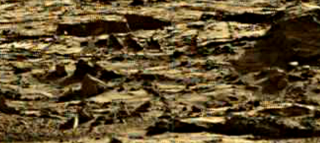 mars sol 1264 anomaly 8 was life on mars