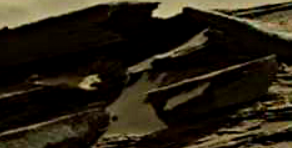 mars sol 1274 anomaly 12 was life on mars