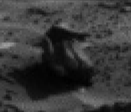 mars sol 1276 anomaly 2 was life on mars