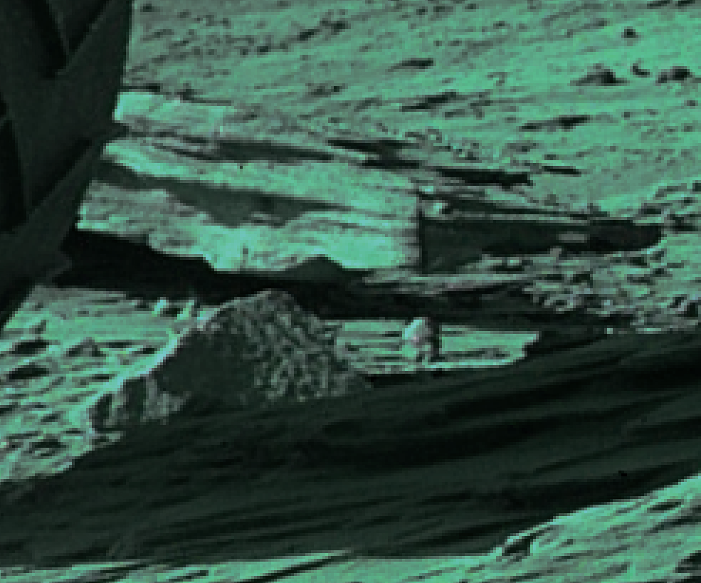 mars sol 1287 anomaly-artifacts 1b was life on mars
