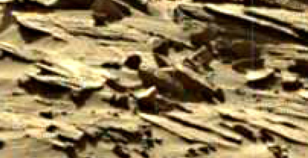 mars sol 1296 anomaly-artifacts 11 was life on mars