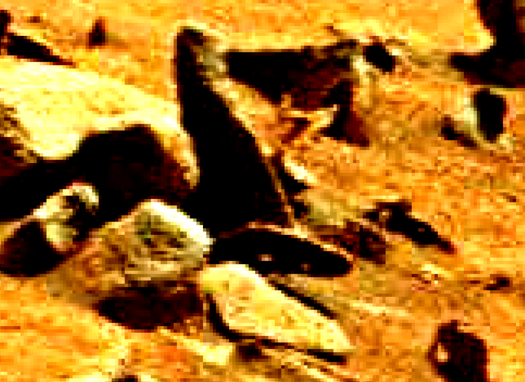 mars sol 837 anomaly artifacts 1-a was life on mars