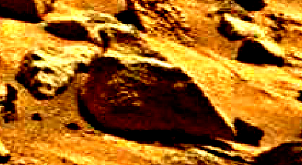 mars sol 837 anomaly artifacts 12 was life on mars