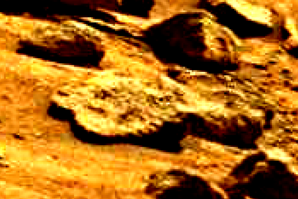 mars sol 837 anomaly artifacts 13 was life on mars