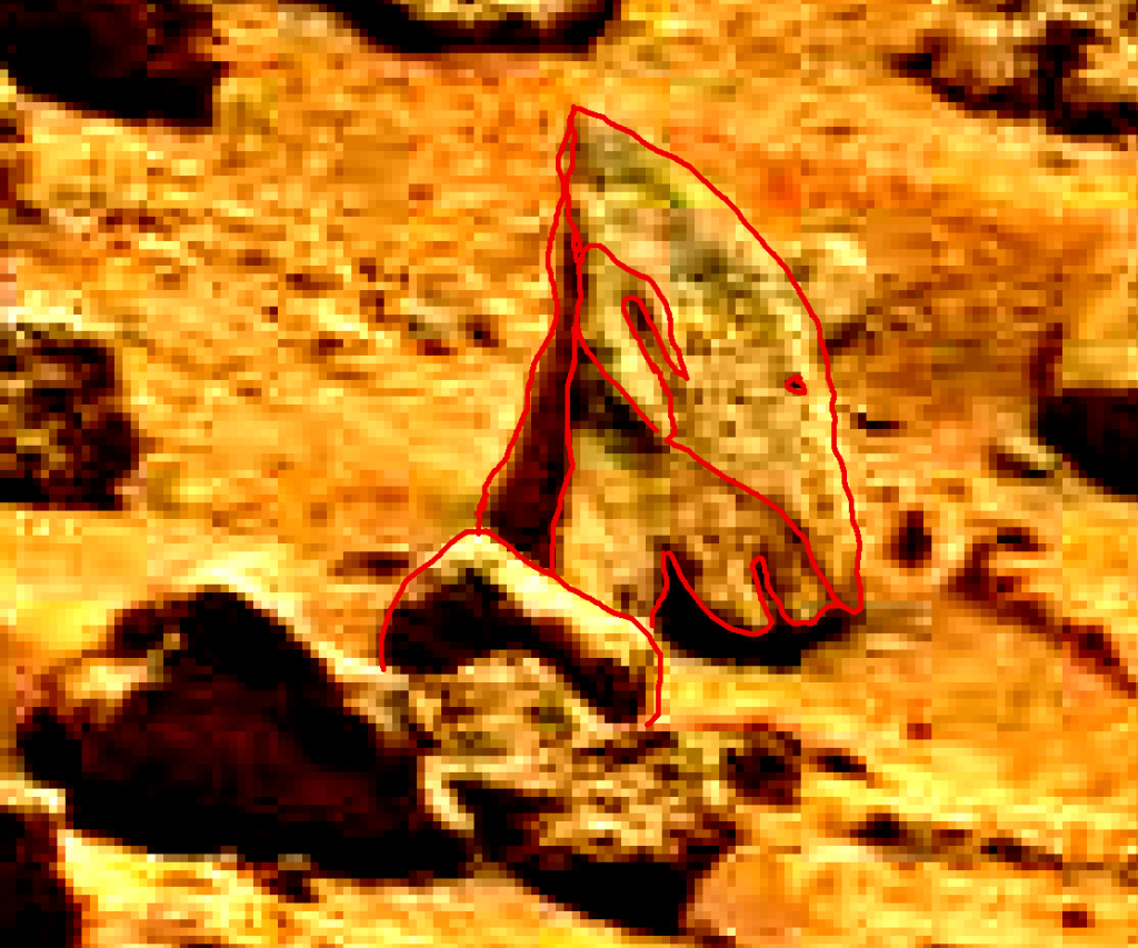 mars sol 837 anomaly artifacts 18a was life on mars
