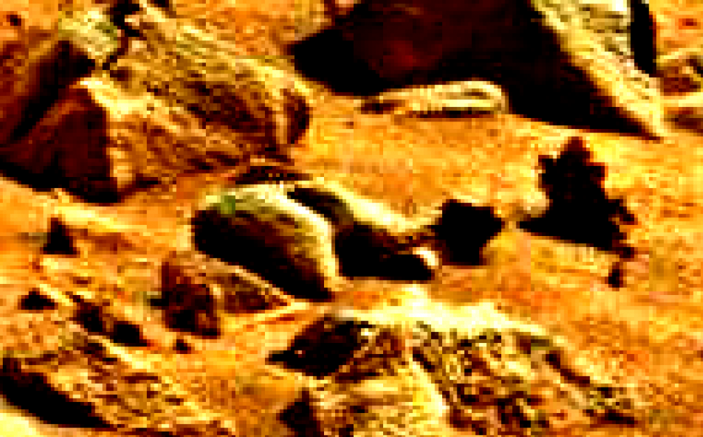 mars sol 837 anomaly artifacts 3-a was life on mars