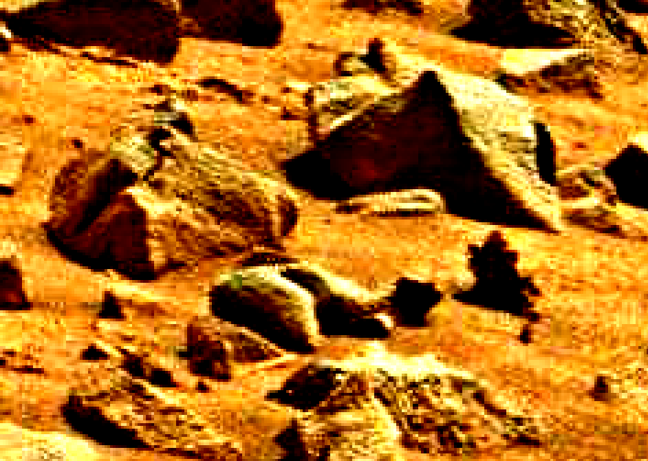 mars sol 837 anomaly artifacts 3 was life on mars