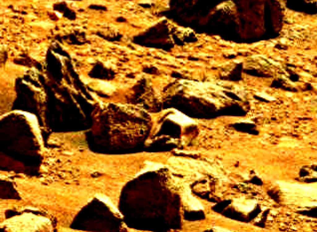 mars sol 837 anomaly artifacts 4 was life on mars