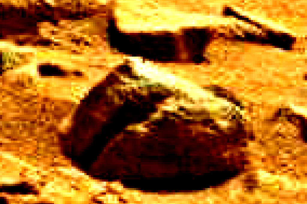 mars sol 837 anomaly artifacts 8 was life on mars