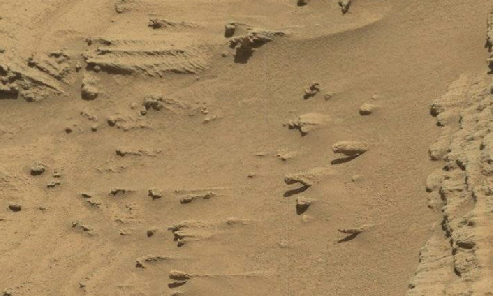 mars sol 1293 anomaly-artifacts 5 was life on mars