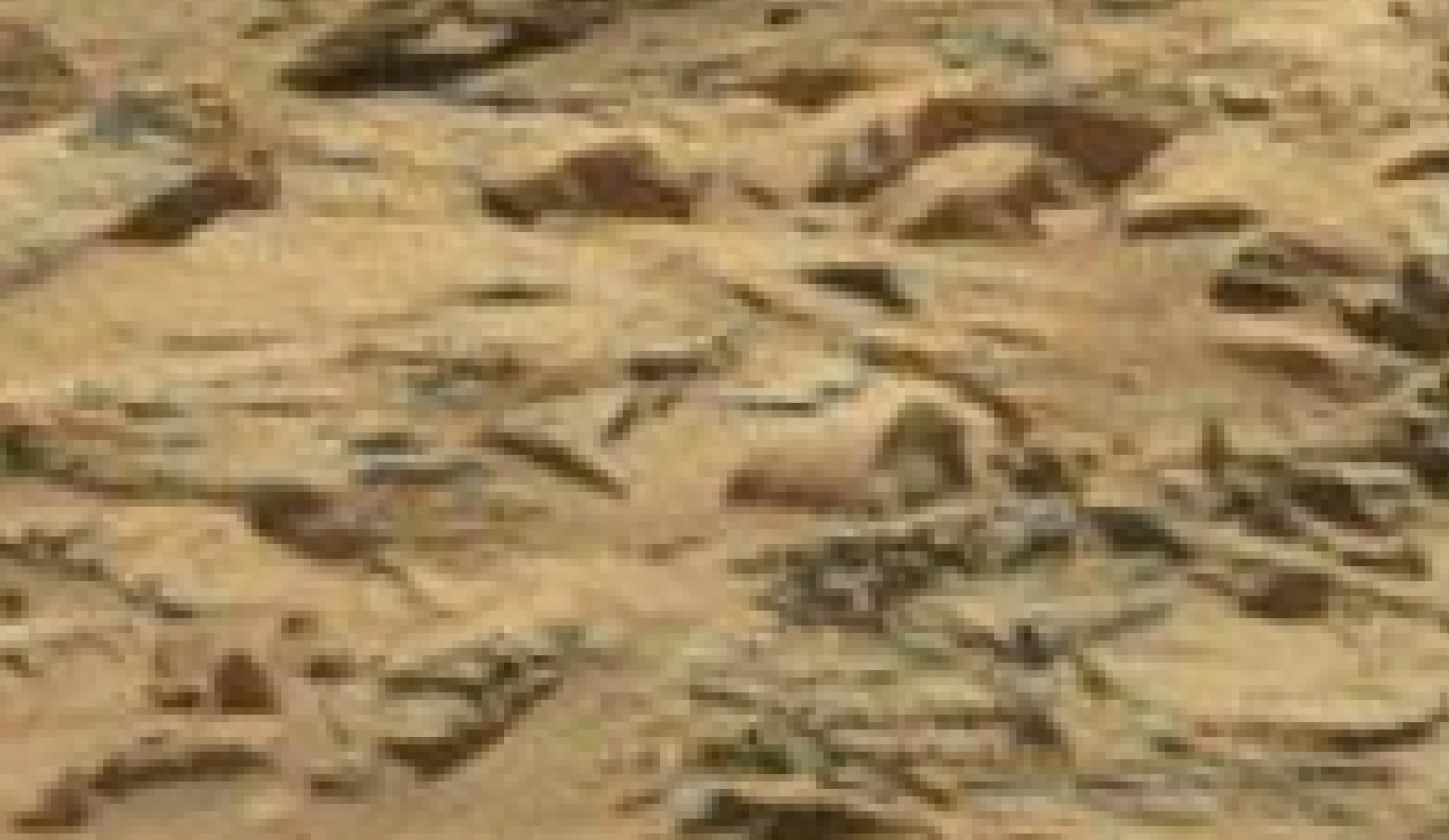 mars sol 1296 anomaly-artifacts 26 was life on mars