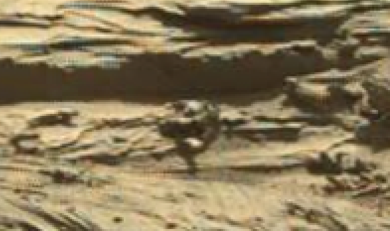 mars sol 1298 anomaly-artifacts 11 was life on mars