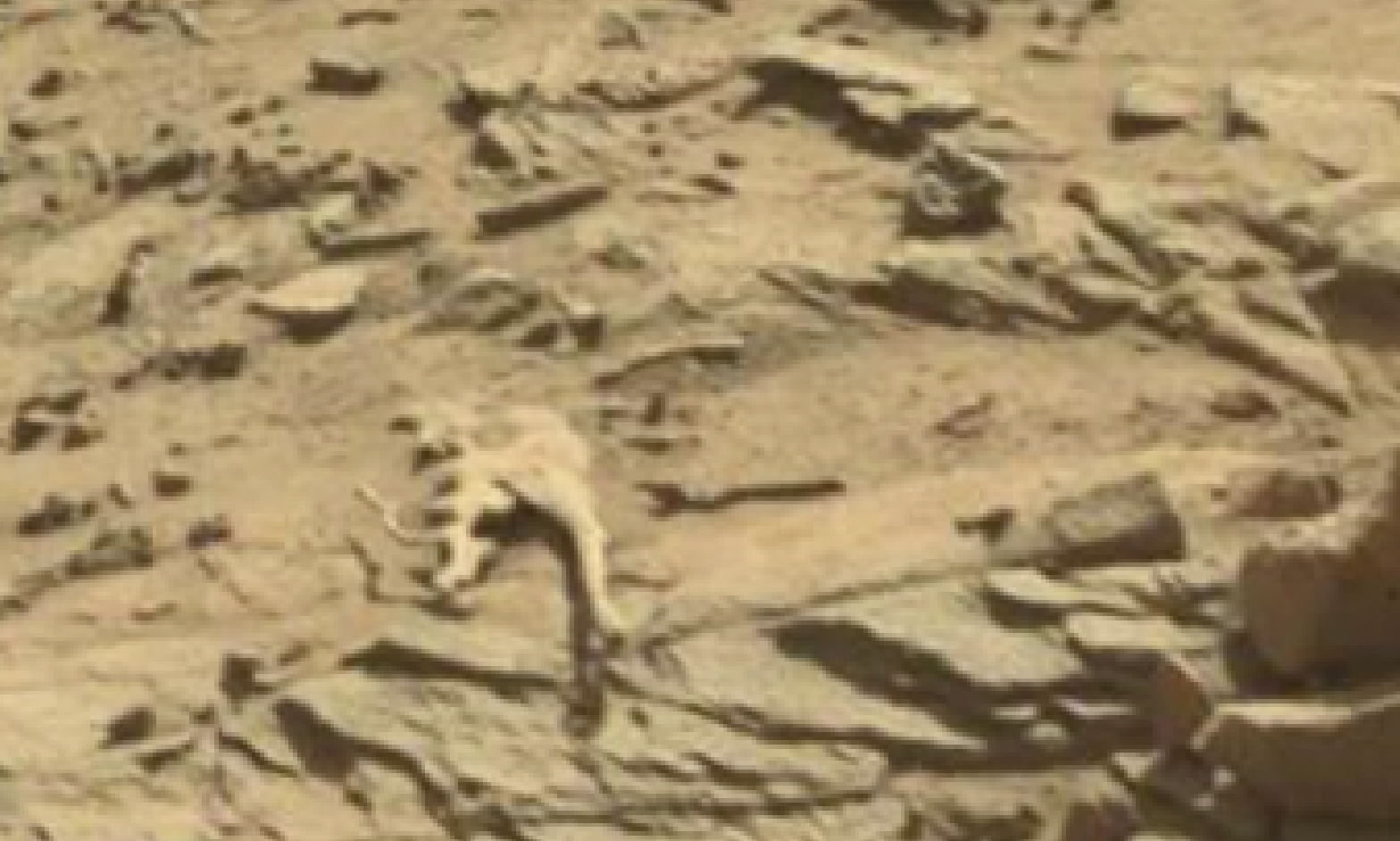mars sol 1298 anomaly-artifacts 2 was life on mars