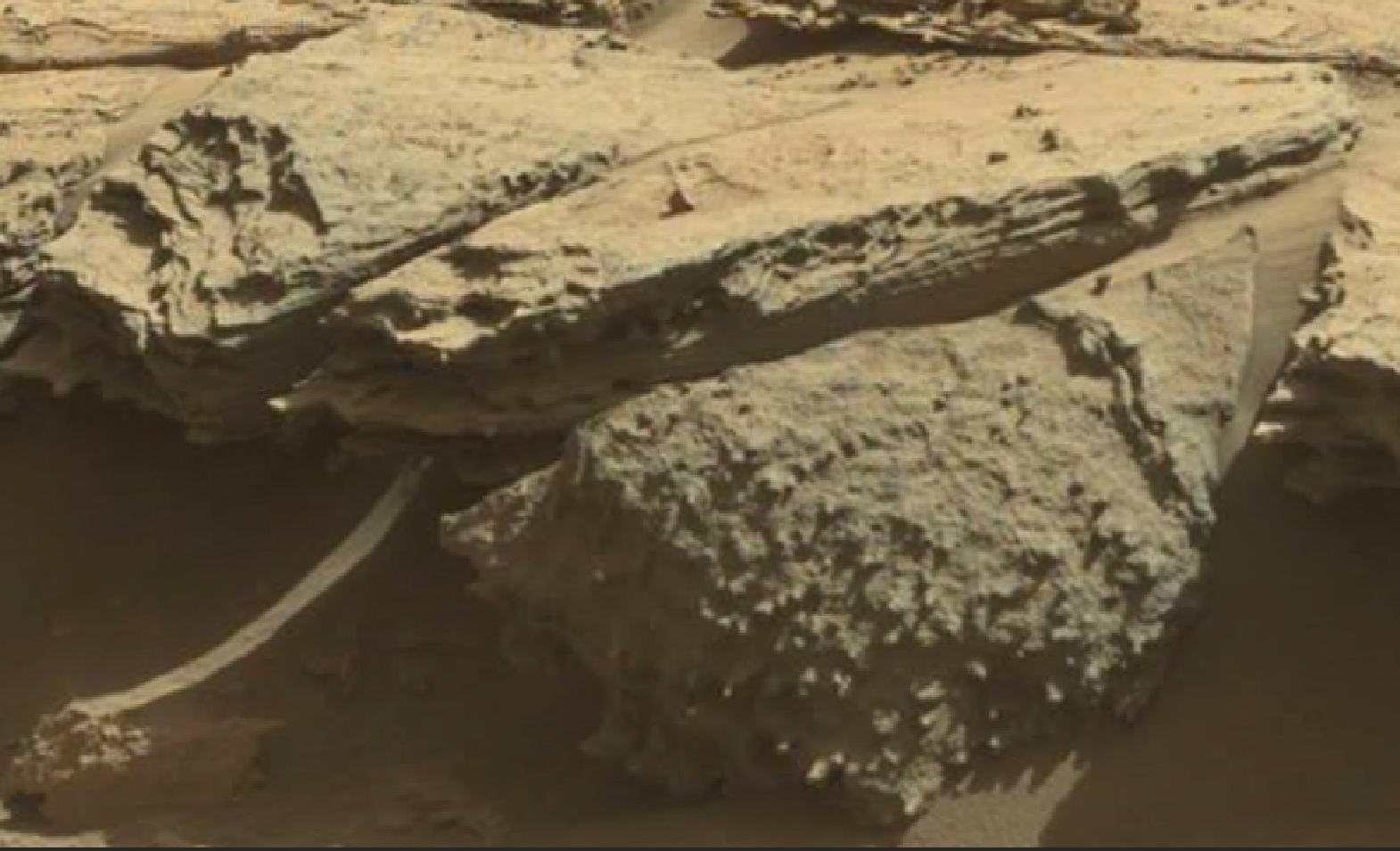 mars sol 1298 anomaly-artifacts 6 was life on mars