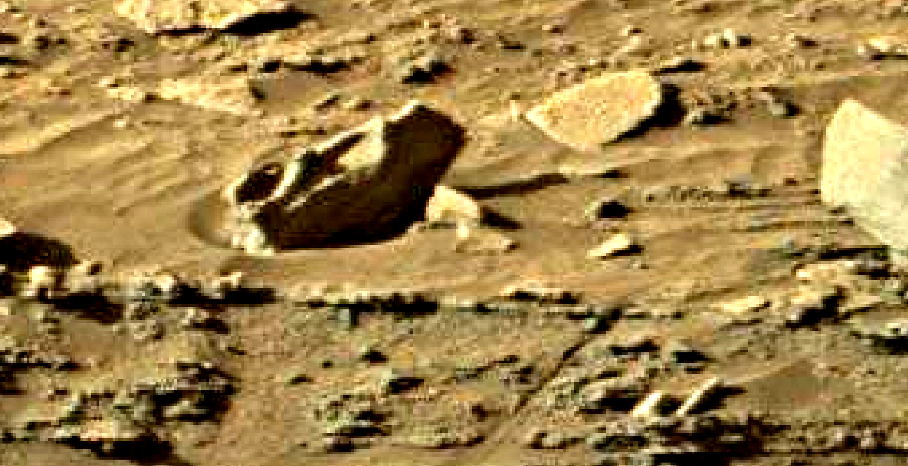 mars sol 1301 anomaly-artifacts 10 was life on mars