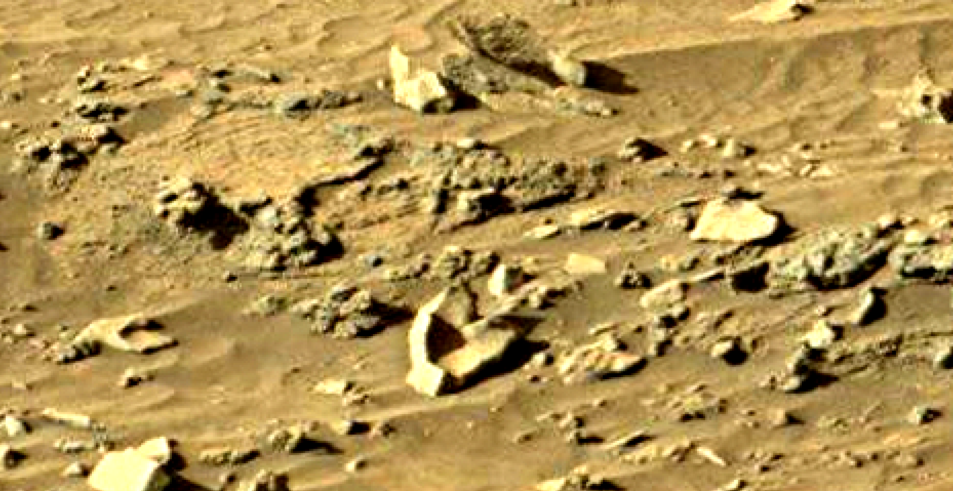 mars sol 1301 anomaly-artifacts 12 was life on mars