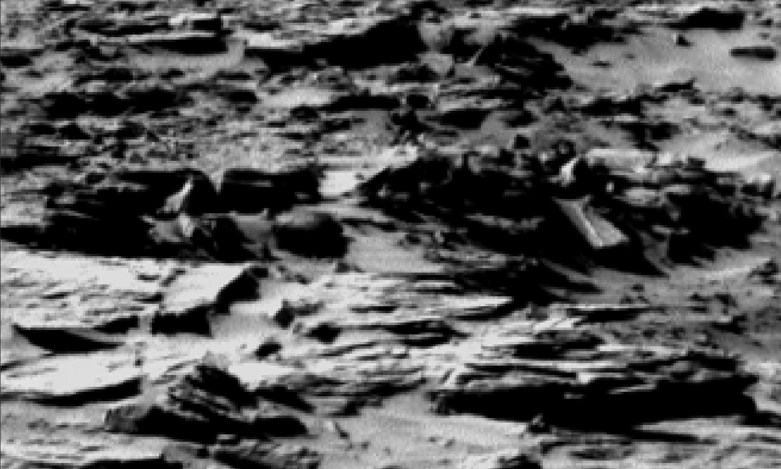 mars sol 1301 anomaly-artifacts 4 was life on mars