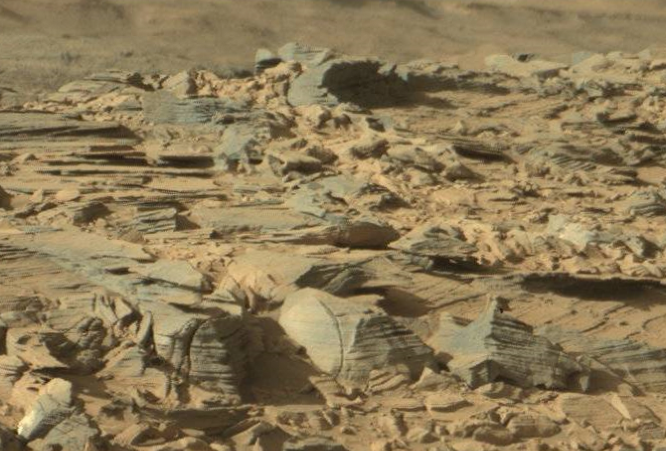 mars sol 1301 anomaly-artifacts 6 was life on mars